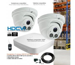 Système HDCVI de vidéosurveillance avec 2 caméras dôme HDCVI focale variable