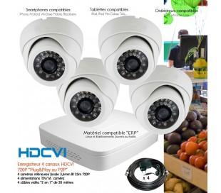Kit de vidéo surveillance Full 960H avec 8 caméras dômes