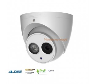 Caméra dôme IP 4MP avec microphone intégré