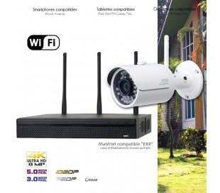 Système de vidéo surveillance WiFi avec 1 caméra extérieure