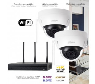 Système WiFi de surveillance avec 2 caméras dômes