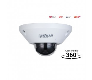 "Caméra de surveillance IP 360° extérieure ""fisheye"""